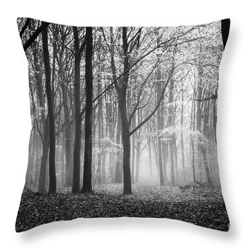 Light And Shadow Throw Pillow by Anne Gilbert
