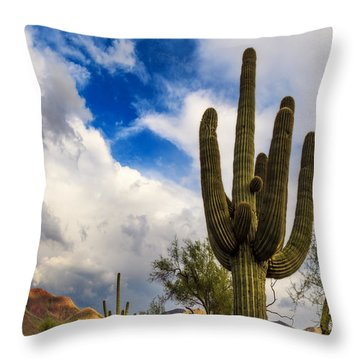 Light And Shadow Throw Pillow by Rick Furmanek