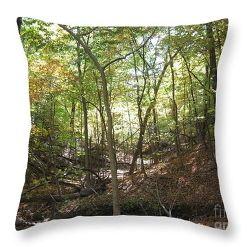 Light And Shadow Through The Forest Throw Pillow