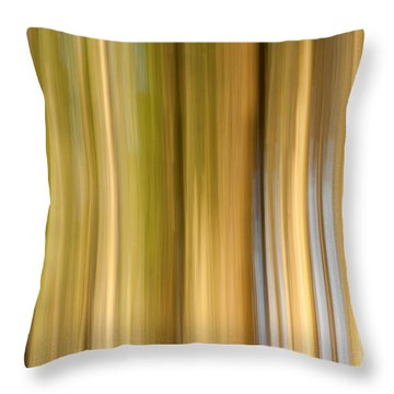Throw Pillow featuring the photograph Light And Snow by Davorin Mance