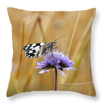Light Butterfly Throw Pillow