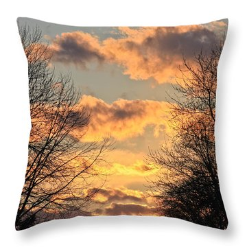 Light Catcher Throw Pillow by Julie Andel