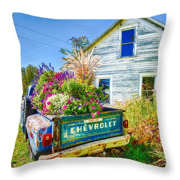 Light Duty Throw Pillow