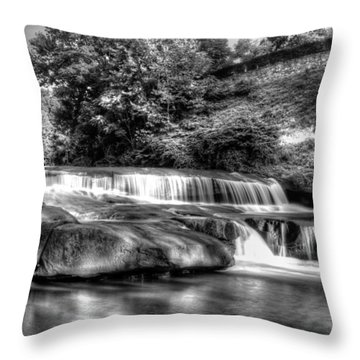 Light In Black And White Throw Pillow