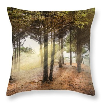 Driftwood Beach Fog Throw Pillows