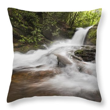 Light In The Forest Throw Pillow by Debra and Dave Vanderlaan