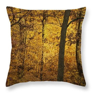 Light In The Forest Throw Pillow by Jane Eleanor Nicholas
