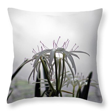 Light Of Darkness Throw Pillow
