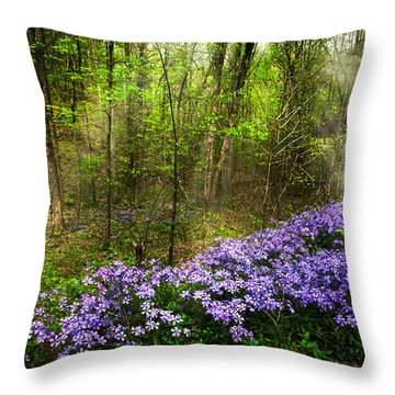Light Of The Forest Fairies Throw Pillow by Debra and Dave Vanderlaan