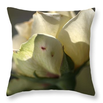 Light On My Face Throw Pillow by Joy Watson