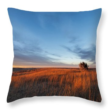 Throw Pillow featuring the photograph Light On The Winter Prairie by Scott Bean