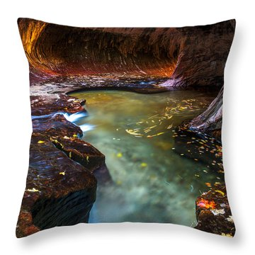 Throw Pillow featuring the photograph Light Passage by Dustin  LeFevre