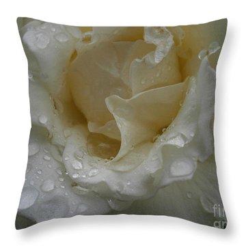 Light Rain Throw Pillow by Drew Shourd