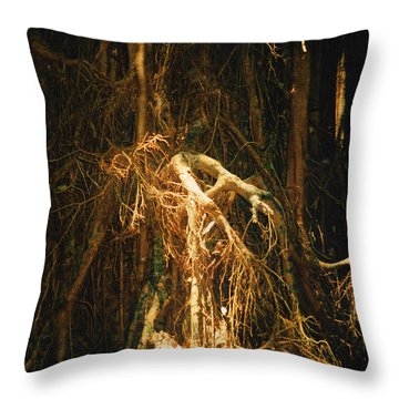 Throw Pillow featuring the photograph Light Roots by Evelyn Tambour