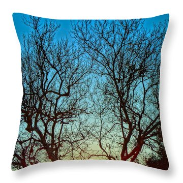Light Sanctuary Throw Pillow