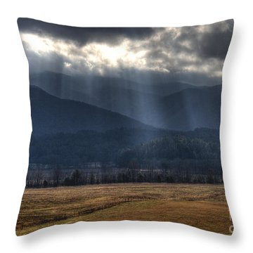 Light Shower Throw Pillow by Douglas Stucky