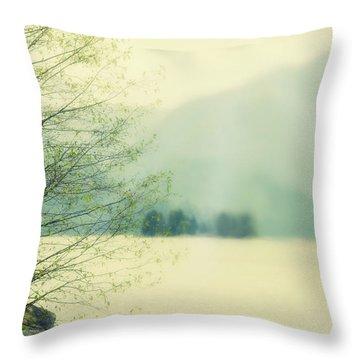 Light Streams Over A Mountain Throw Pillow by Roberta Murray