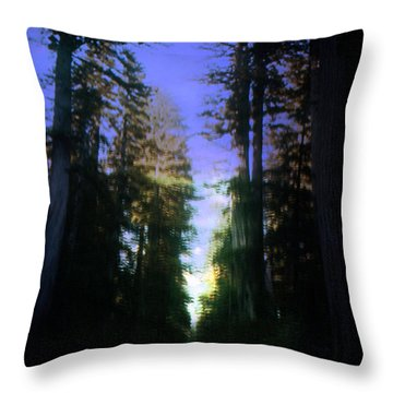 Throw Pillow featuring the digital art Light Through The Forest by Cathy Anderson