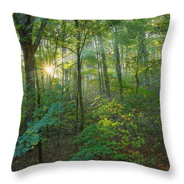 Light Up The Forest Throw Pillow