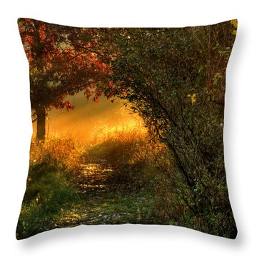 Lighted Path Throw Pillow by Thomas Young