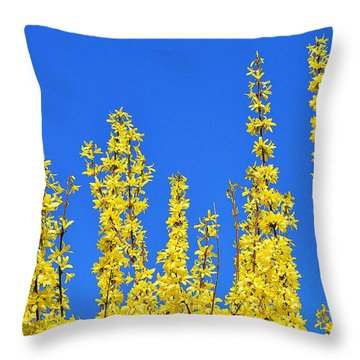 Lighting The Spring Sky Throw Pillow by Felicia Tica