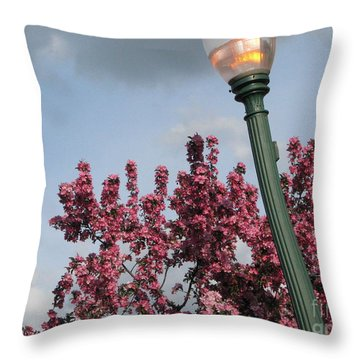 Throw Pillow featuring the photograph Lighting Up The Day by Michael Krek