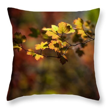 Throw Pillow featuring the photograph Lightly Falling by Aaron Aldrich