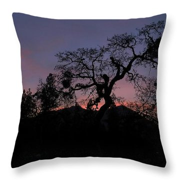 Throw Pillow featuring the photograph Lights Out by Julia Hassett
