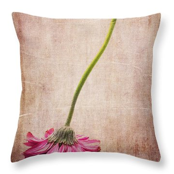 Like A Broom Throw Pillow by Randi Grace Nilsberg