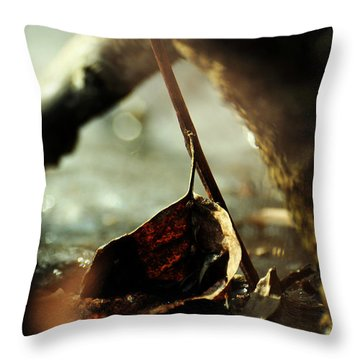 Like A Copper Ladle Scooping Up The Sun Throw Pillow by Rebecca Sherman