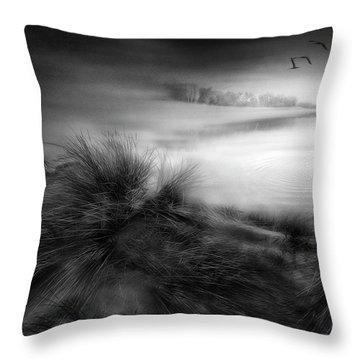 Reeds Throw Pillows