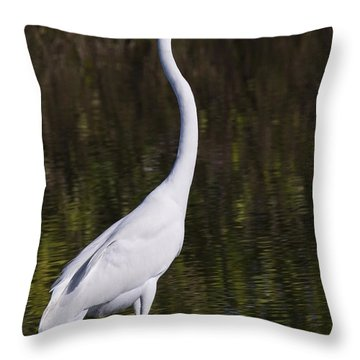 Like A Great Egret Monument Throw Pillow by John M Bailey