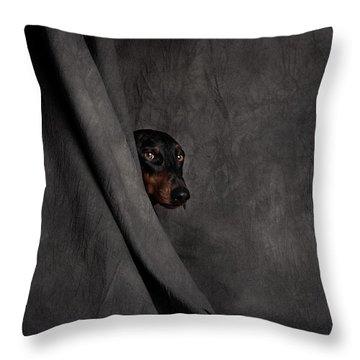 Drapery Throw Pillows