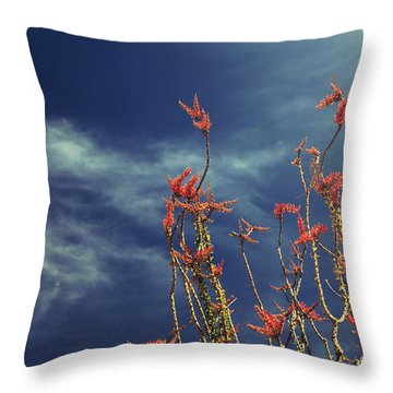Like Flying Amongst The Clouds Throw Pillow by Laurie Search