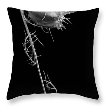 Like Love Throw Pillow