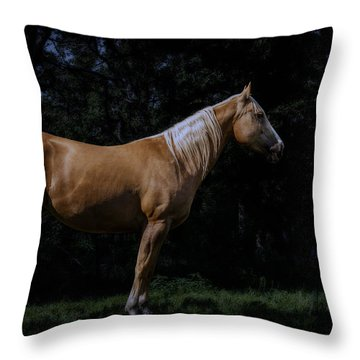Like Moonlight On A Wire Throw Pillow by Doug Long