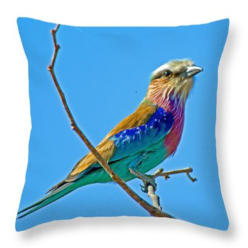 Lilac-breasted Roller In Kruger National Park-south Africa Throw Pillow