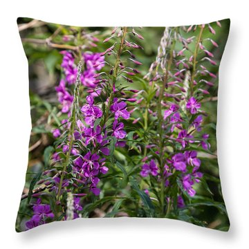 Throw Pillow featuring the photograph Lilac Flower by Leif Sohlman