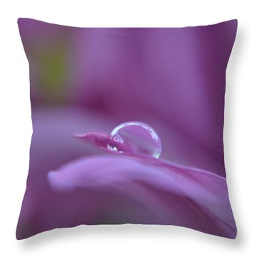 Throw Pillow featuring the photograph Lilac by Michelle Meenawong