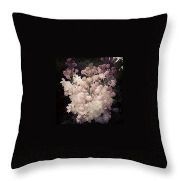 Bloom Throw Pillows