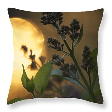 Lilacs At Sunset Throw Pillow by Penny Meyers