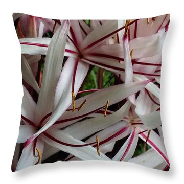 Throw Pillow featuring the photograph Lilies by Alohi Fujimoto