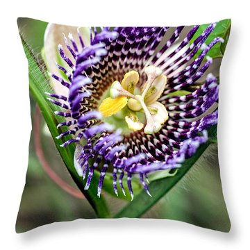 Throw Pillow featuring the photograph Lilikoi Flower by Dan McManus
