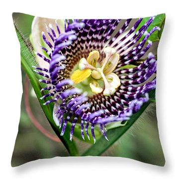 Passionfruit Throw Pillows