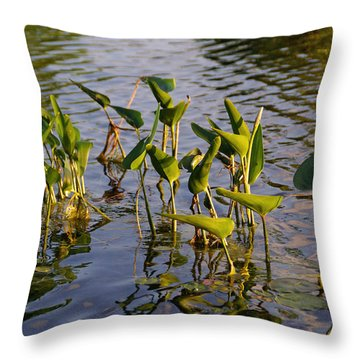 Lillies In Evening Glory Throw Pillow