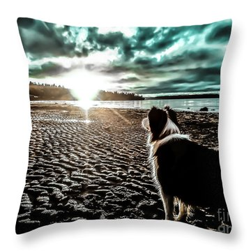 Lilly And The Sun Throw Pillow by Arlene Sundby
