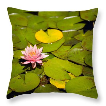 Lilly Pond Pink Throw Pillow