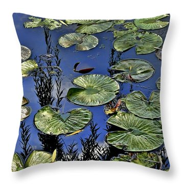 Lilly Pond Throw Pillow by Frozen in Time Fine Art Photography