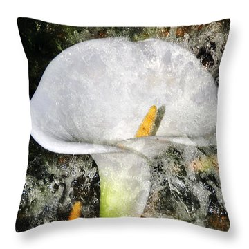 Throw Pillow featuring the photograph Lilly Splash by Davina Washington