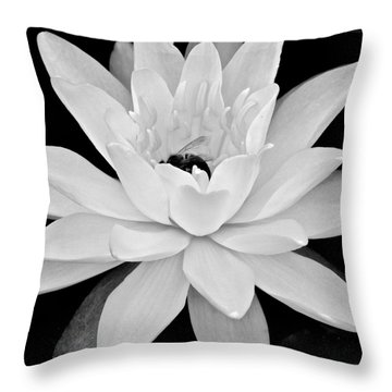 Lilly White Throw Pillow by Frozen in Time Fine Art Photography